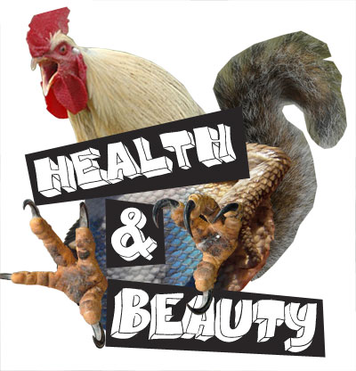 Health & Beauty Tour Poster